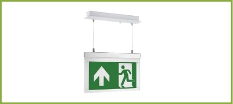 Exit P